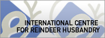 Internationsl Centre for Reindeer Husbandry